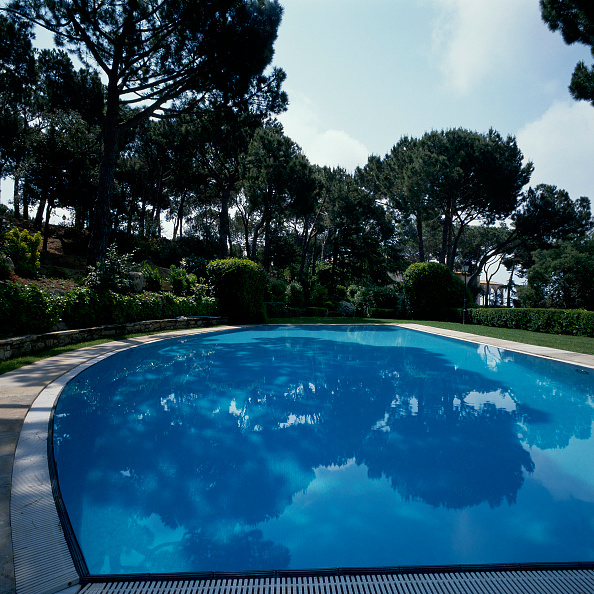 Grass Family「View of a clear swimming pool」:写真・画像(19)[壁紙.com]