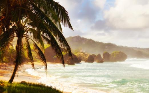 Barbados「Bathsheba, Barbados」:スマホ壁紙(4)