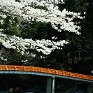 香嵐渓壁紙の画像(壁紙.com)