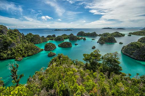 Island「Pianemo Raja Ampat, West Papua, Indonesia」:スマホ壁紙(7)
