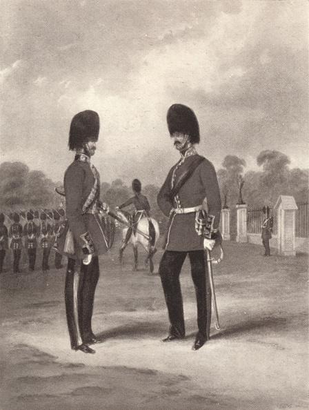 魚・熱帯魚「'Scots Fusilier Guards', C1820-1870, (1909)」:写真・画像(16)[壁紙.com]