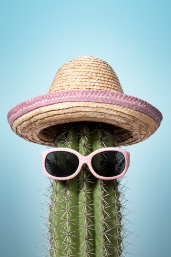 Cool Attitude「Pink mexico cactus. Summer Humor Heat Holiday Sunglasses Sombrero」:スマホ壁紙(4)