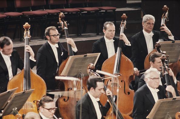 クラシック音楽家「Double Bass Section」:写真・画像(2)[壁紙.com]