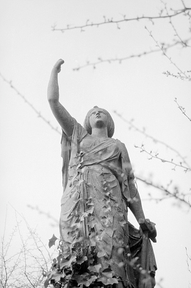 Overgrown「Statue」:写真・画像(7)[壁紙.com]