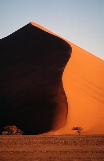 Namibian Desert「Sand Dune in the Namib Desert」:スマホ壁紙(15)