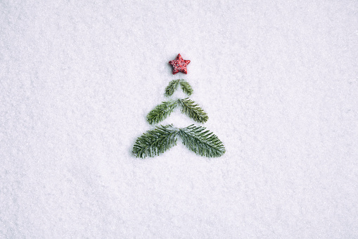 Conceptual Symbol「Pine branche christmas tree - Background Nature Snow White」:スマホ壁紙(2)