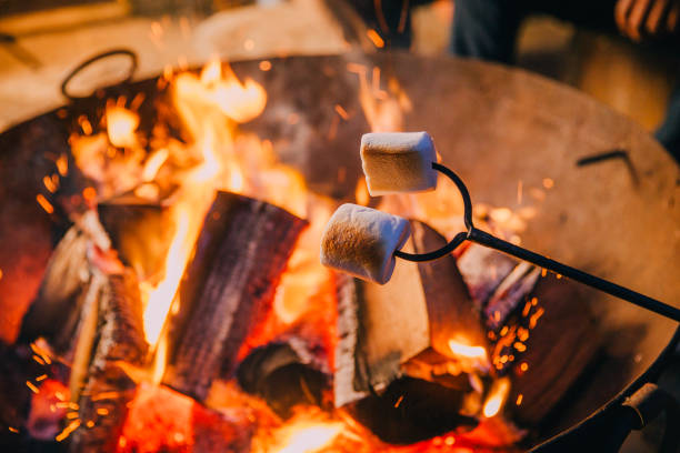 Close-up Shot of Marshmallows Being Held Over a Fire:スマホ壁紙(壁紙.com)