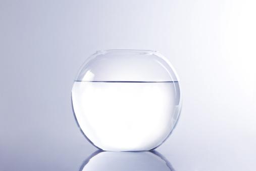 Goldfish「金魚ホーム」:スマホ壁紙(16)