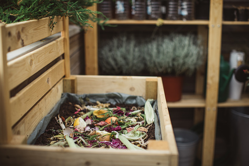 Recycling「Making compost from leftovers」:スマホ壁紙(12)