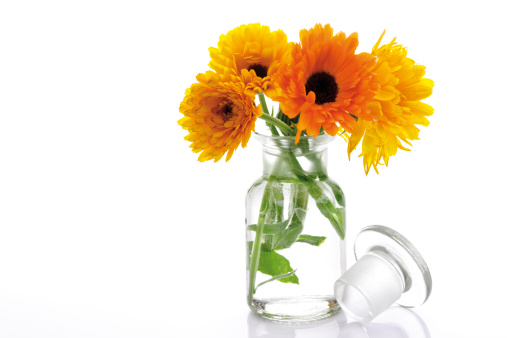 Bouquet「'Marigold flowers in vase, (Calendula Officinalis), close-up'」:スマホ壁紙(3)