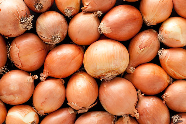 Onions background:スマホ壁紙(壁紙.com)