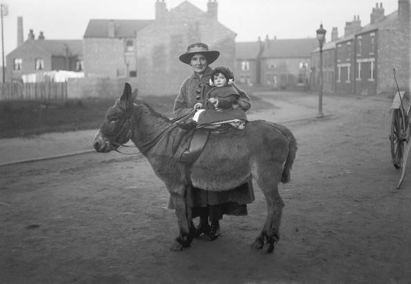 町「Woman Holding Child On Donkey」:写真・画像(11)[壁紙.com]