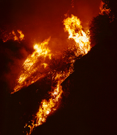"""Angeles National Forest「""""Station Fire"""" wildfire」:スマホ壁紙(14)"""