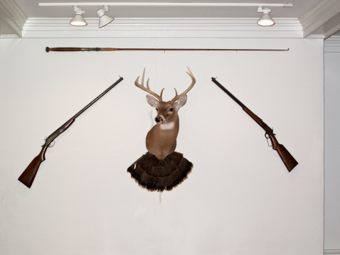 イエローキャブ「A hunting trophy in the middle of two old-fashioned rifles and a fishing rod」:スマホ壁紙(18)