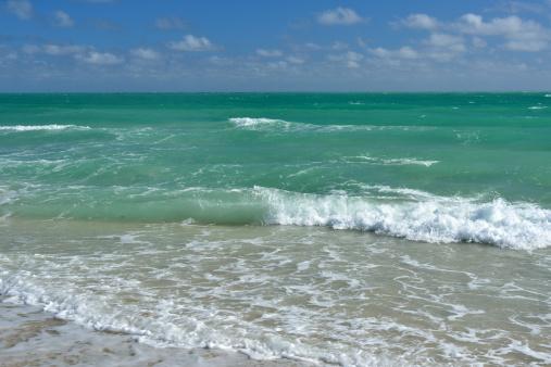 Miami Beach「Ocean」:スマホ壁紙(9)