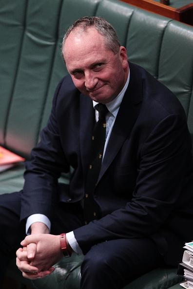 笑顔「Federal Parliamentarians Continue To Be Questioned Over Dual Citizenship」:写真・画像(13)[壁紙.com]