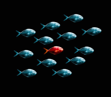 Surrounding「One Red Fish Surrounded By Blue Fish.」:スマホ壁紙(7)