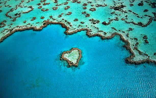 Australia, Great Barrier Reef, heart shaped reef, aerial view:スマホ壁紙(壁紙.com)