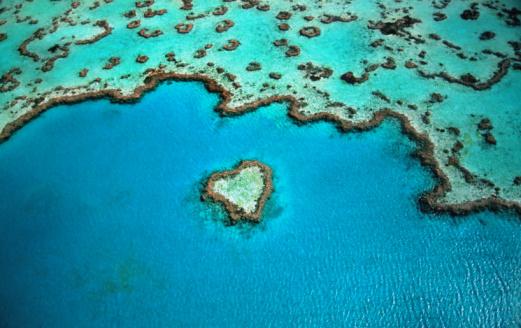Nature「Australia, Great Barrier Reef, heart shaped reef, aerial view」:スマホ壁紙(4)
