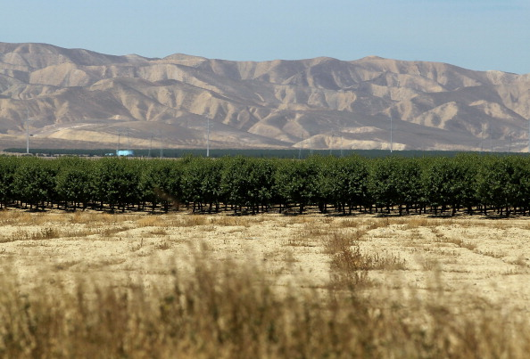 Grove「Farmers Hire Drilling Crew To Search For Water To Irrigate Crops」:写真・画像(1)[壁紙.com]