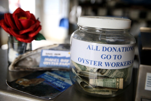 Wilderness Area「Oyster Farmers Begin To Wind Down Operations After Feds End Nat'l Seashore Lease」:写真・画像(6)[壁紙.com]