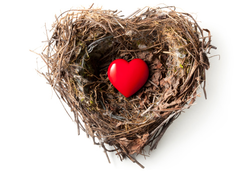 ハート「Love の巣」:スマホ壁紙(13)