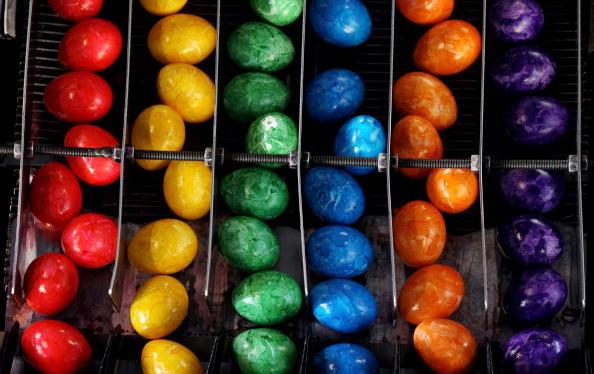Industrial Equipment「Bavaria's Biggest Coloured Eggs Producer」:写真・画像(14)[壁紙.com]