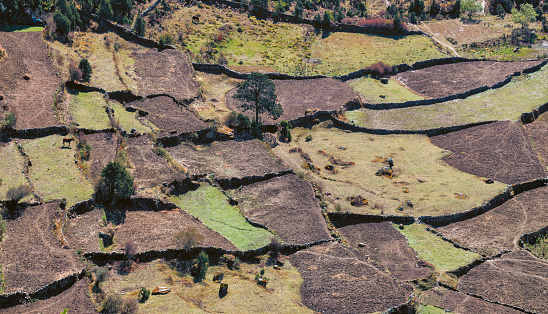 Khumbu「Nepal, Khumbu, Everest region, Crop fields」:スマホ壁紙(3)