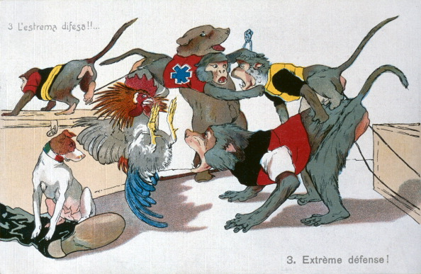 Patriotism「The War Of Animals 3」:写真・画像(9)[壁紙.com]