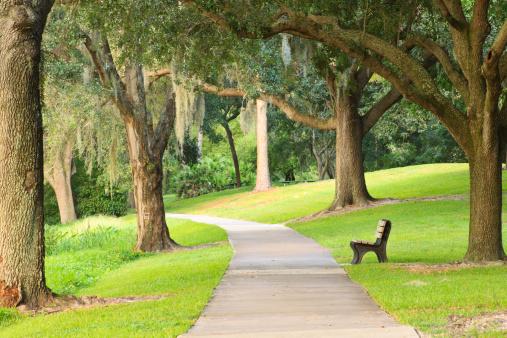 Bicycle Lane「Peaceful Park Bench」:スマホ壁紙(6)