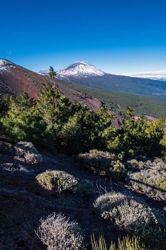 Volcano Islands「Teide Volcano on Tenerife, Canary Islands, Spain」:スマホ壁紙(12)