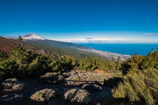 Lava「Teide Volcano on Tenerife, Canary Islands, Spain」:スマホ壁紙(4)