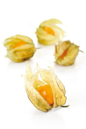 Chinese Lantern「Physalis fruits」:スマホ壁紙(11)