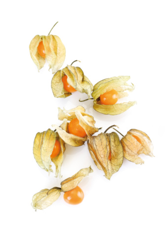 Chinese Lantern「Physalis fruits」:スマホ壁紙(4)