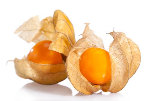 Chinese Lantern「Physalis fruit (P. peruviana)」:スマホ壁紙(18)