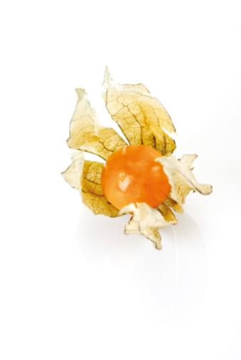 Chinese Lantern「Physalis fruit」:スマホ壁紙(14)