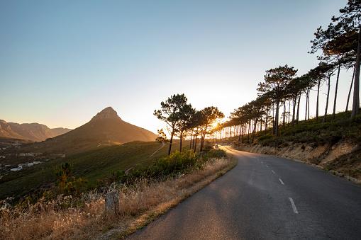 Cape Town「signal hill」:スマホ壁紙(8)