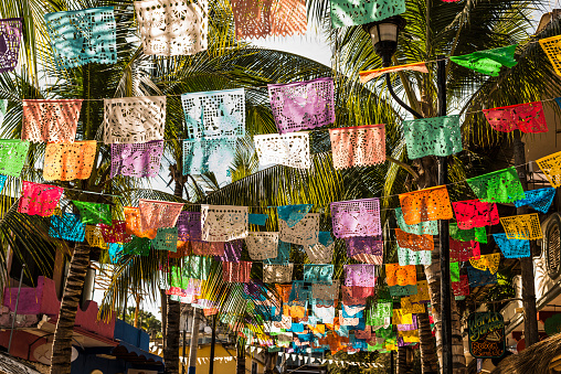 Sayulita「Multicolor flags under palm trees」:スマホ壁紙(6)
