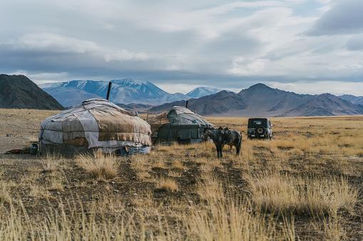 Tent「Mongolian tribe village in steppe in Mongolia」:スマホ壁紙(3)