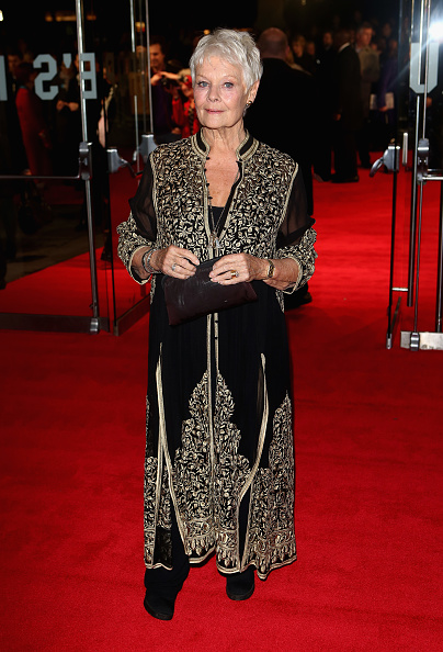 "Odeon Leicester Square「""Philomena"" - American Express Gala - Red Carpet Arrivals: 57th BFI London Film Festival」:写真・画像(19)[壁紙.com]"