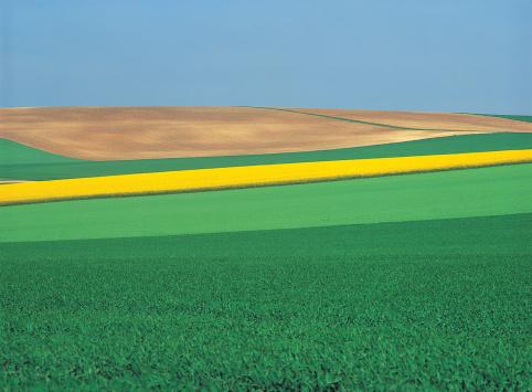 Patchwork Landscape「Patchwork Landscape」:スマホ壁紙(7)