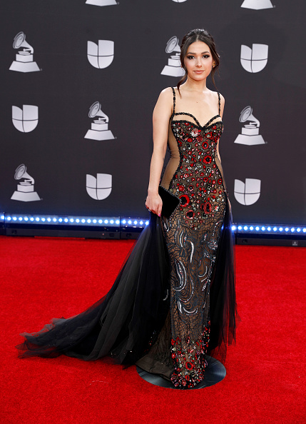 Latin Grammy Awards「20th Annual Latin GRAMMY Awards - Arrivals」:写真・画像(18)[壁紙.com]
