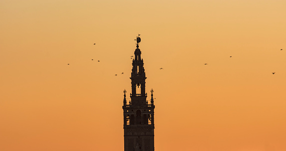 Flock Of Birds「Spain, Andalusia, Seville, Bell tower of La Giralda against yellow sky with birds flying around」:スマホ壁紙(11)