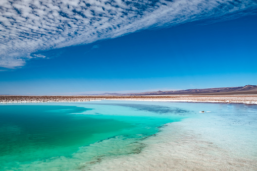 San Pedro De Atacama「Hidden ponds of Baltinache, Atacama Desert」:スマホ壁紙(13)