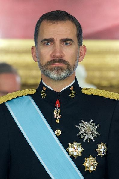 Charlie Hebdo「King Felipe VI of Spain Receives New Ambassadors」:写真・画像(5)[壁紙.com]