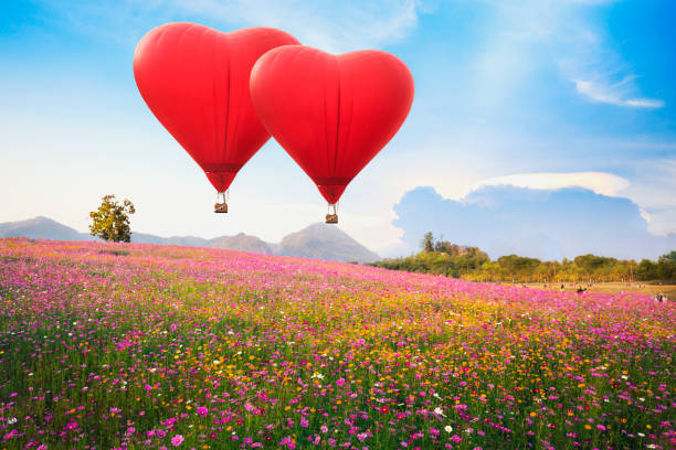 Red heart air balloon over on Beautiful Cosmos Flower in park:スマホ壁紙(壁紙.com)