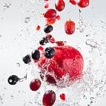 Cranberry壁紙の画像(壁紙.com)