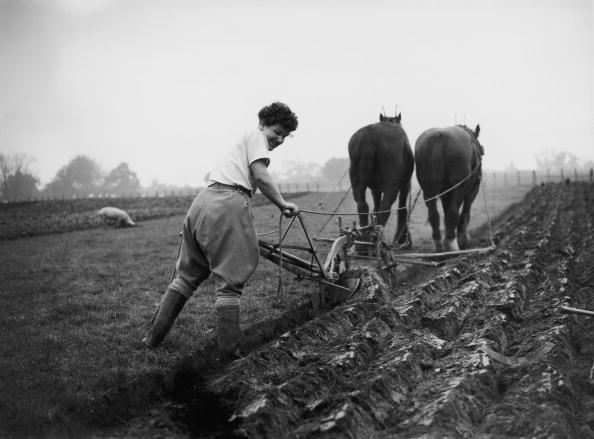 Agriculture「Ploughing In Wales」:写真・画像(3)[壁紙.com]