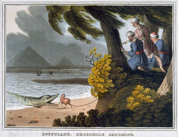 世界遺産「Egyptians Crocodile Catching' 1813」:写真・画像(14)[壁紙.com]