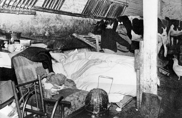 Postwar「Post War Housing」:写真・画像(17)[壁紙.com]